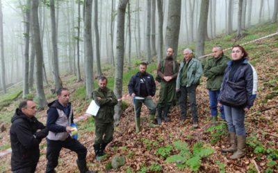 Организовано полагање стручног испита у шумским газдинствима – Краљево, Крагујевац, Лесковац и Сремска Митровица